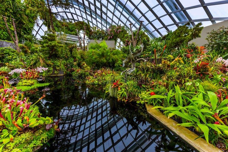 Δασικός θόλος σύννεφων στους κήπους από τον κόλπο στη Σιγκαπούρη στοκ εικόνα