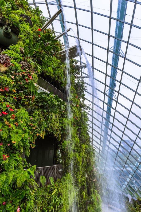 Δασικός θόλος σύννεφων στους κήπους από τον κόλπο στη Σιγκαπούρη στοκ εικόνα με δικαίωμα ελεύθερης χρήσης