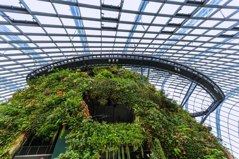 Δασικός θόλος σύννεφων στους κήπους από τον κόλπο στη Σιγκαπούρη στοκ φωτογραφίες με δικαίωμα ελεύθερης χρήσης