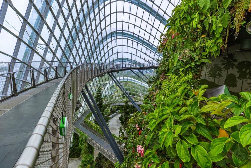Δασικός θόλος σύννεφων στους κήπους από τον κόλπο στη Σιγκαπούρη στοκ φωτογραφία με δικαίωμα ελεύθερης χρήσης