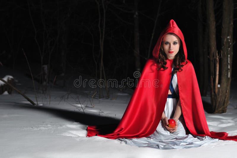 δασικός κουκουλών χειμώνας οδήγησης νύχτας κόκκινος στοκ φωτογραφία με δικαίωμα ελεύθερης χρήσης