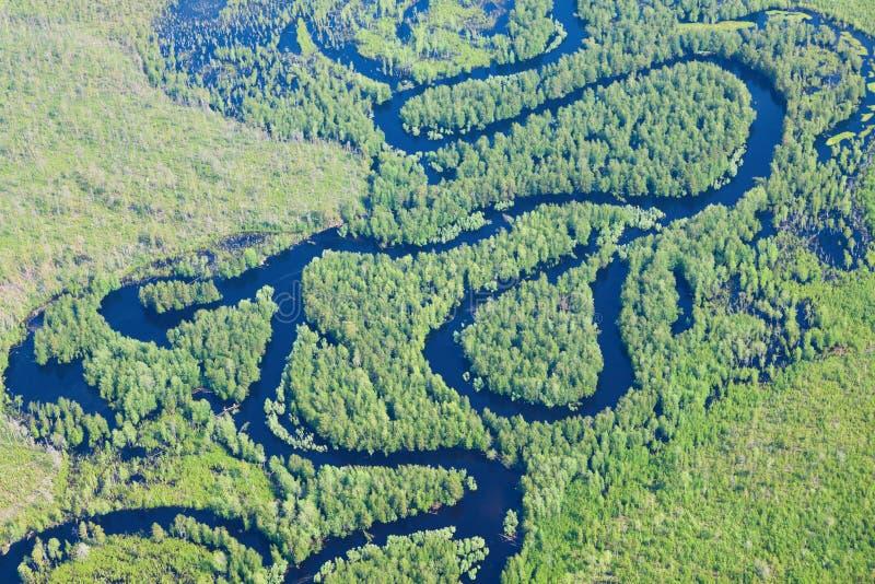 Δασικός ποταμός στην πλημμύρα, τοπ άποψη στοκ φωτογραφίες