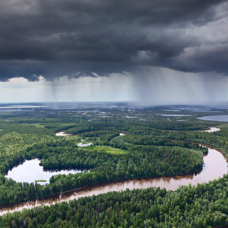 Δασικός ποταμός στη βροχερή ημέρα στοκ φωτογραφία