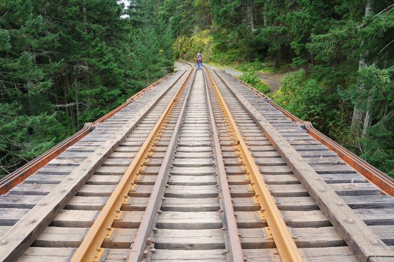 δασικός σιδηρόδρομος στοκ εικόνες με δικαίωμα ελεύθερης χρήσης
