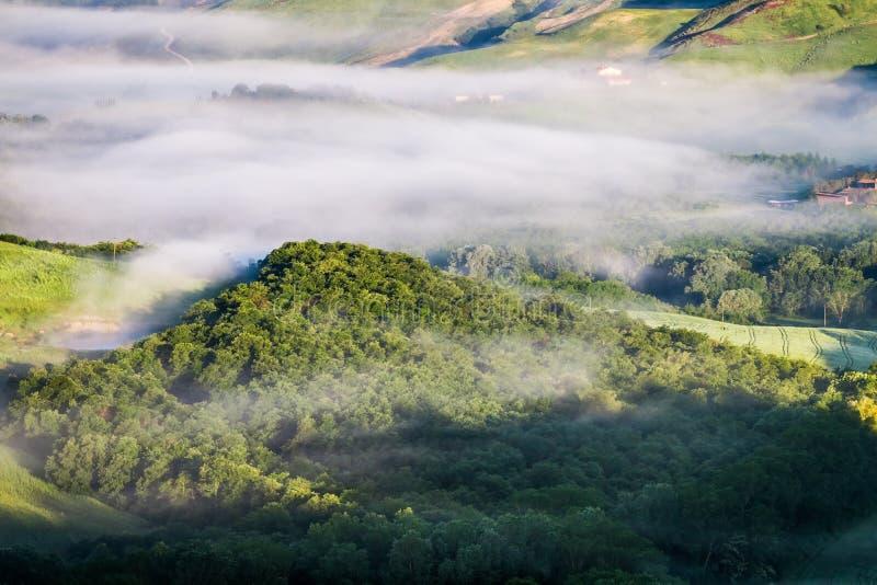 Δασικός λόφος της Misty στην Τοσκάνη στοκ φωτογραφίες με δικαίωμα ελεύθερης χρήσης