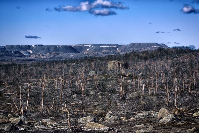δασικός-tundra που μετατρέπεται σε έρημο μετά από τη μόλυνση του χώματος στοκ εικόνες