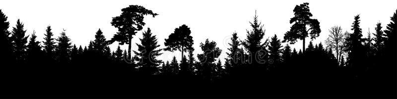 Δασικό διάνυσμα σκιαγραφιών Σκωτσέζικο έλατο, χριστουγεννιάτικο δέντρο, ερυθρελάτες, έλατο, πεύκο Άνευ ραφής πανόραμα απεικόνιση αποθεμάτων