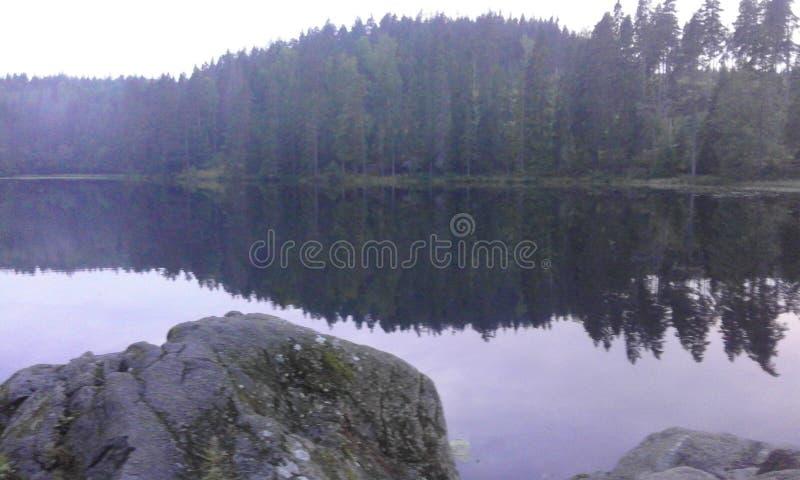 Δασικό καλοκαίρι νερού φύσης της Σουηδίας στοκ φωτογραφίες