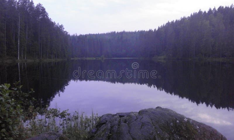 Δασικό καλοκαίρι νερού φύσης της Σουηδίας στοκ φωτογραφία