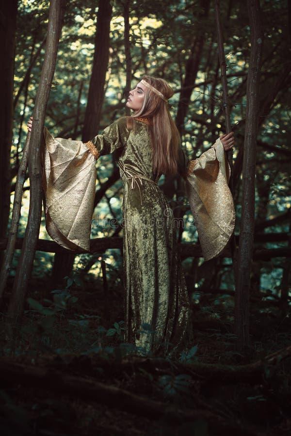 Δασικό κορίτσι στα σκοτεινά ξύλα στοκ εικόνα με δικαίωμα ελεύθερης χρήσης