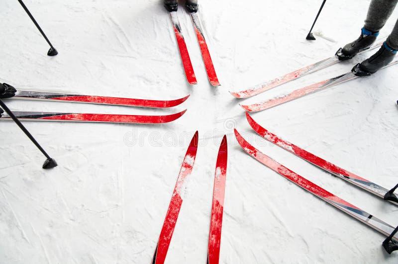 δασικό να κάνει σκι στοκ φωτογραφία με δικαίωμα ελεύθερης χρήσης