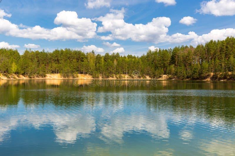 δασικό πεύκο λιμνών στοκ εικόνες