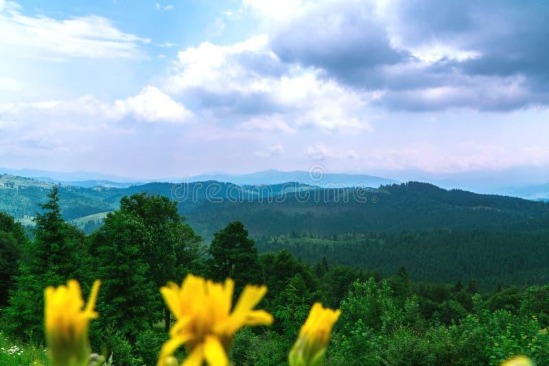 Δασικό τοπίο βουνών κάτω από τον ουρανό βραδιού με τα σύννεφα στον ήλιο στοκ φωτογραφία με δικαίωμα ελεύθερης χρήσης