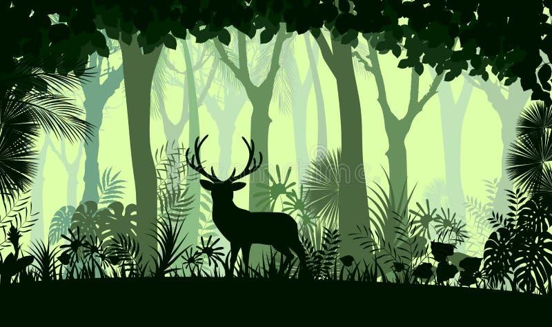 Δασικό υπόβαθρο με τα άγρια ελάφια των δέντρων απεικόνιση αποθεμάτων