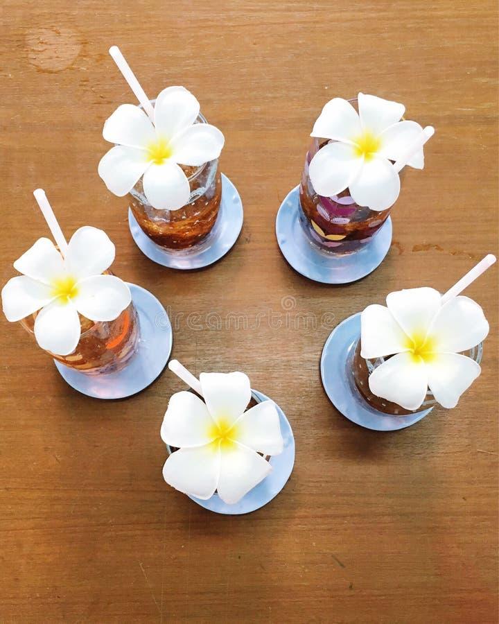 Δασοφύλακας πέντε λουλουδιών στοκ φωτογραφία με δικαίωμα ελεύθερης χρήσης