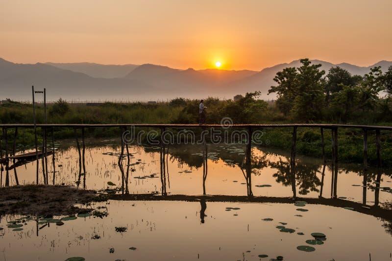 Δασώδης γέφυρα στην ανατολή λιμνών στοκ φωτογραφία