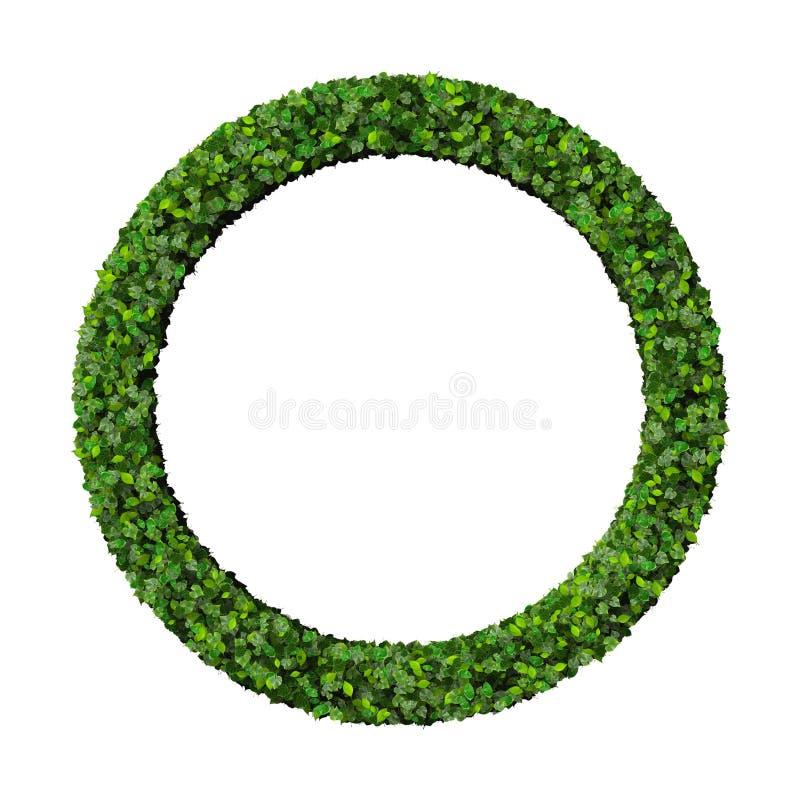 Δαχτυλίδι που γίνεται από τα πράσινα φύλλα διανυσματική απεικόνιση