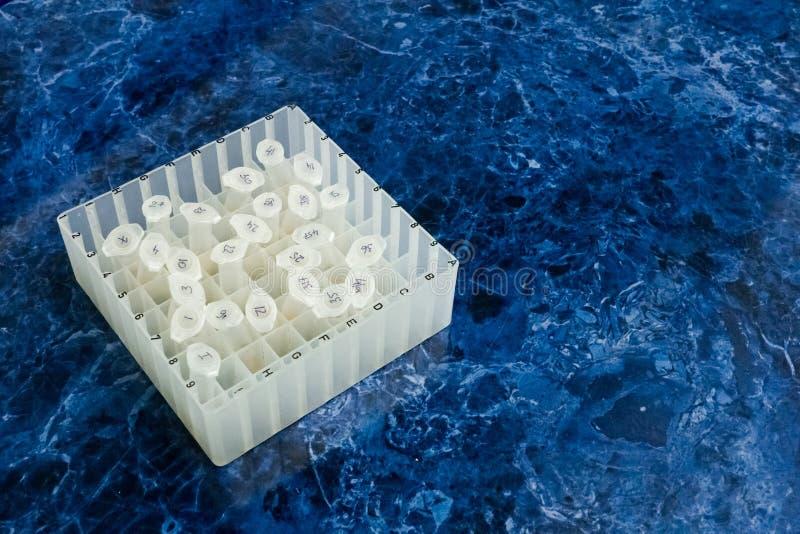 Δείγματα για τη μελέτη Κιβώτιο για το eppendorf στον υπολογιστή γραφείου στοκ φωτογραφία με δικαίωμα ελεύθερης χρήσης