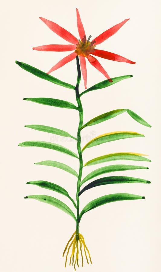 Δείγμα του λουλουδιού χρωματισμένο σε ελεφαντόδοντο χαρτί απεικόνιση αποθεμάτων