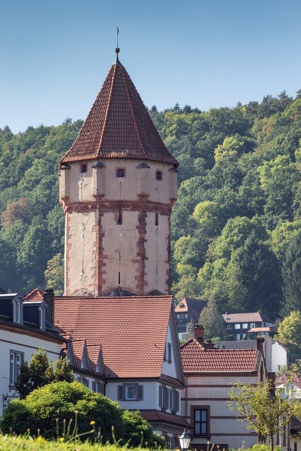 Δειγμένος πύργος με τα περιβάλλοντα σπίτια στοκ φωτογραφία με δικαίωμα ελεύθερης χρήσης