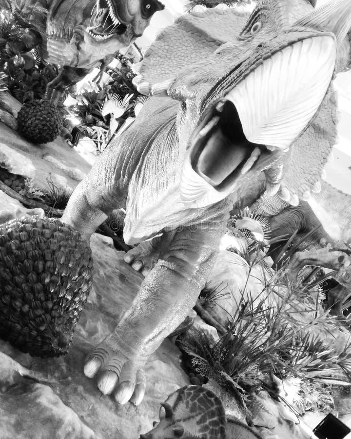 Δεινόσαυροι της Dino στοκ φωτογραφία με δικαίωμα ελεύθερης χρήσης