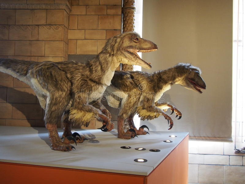 Δεινόσαυροι στοκ φωτογραφία με δικαίωμα ελεύθερης χρήσης