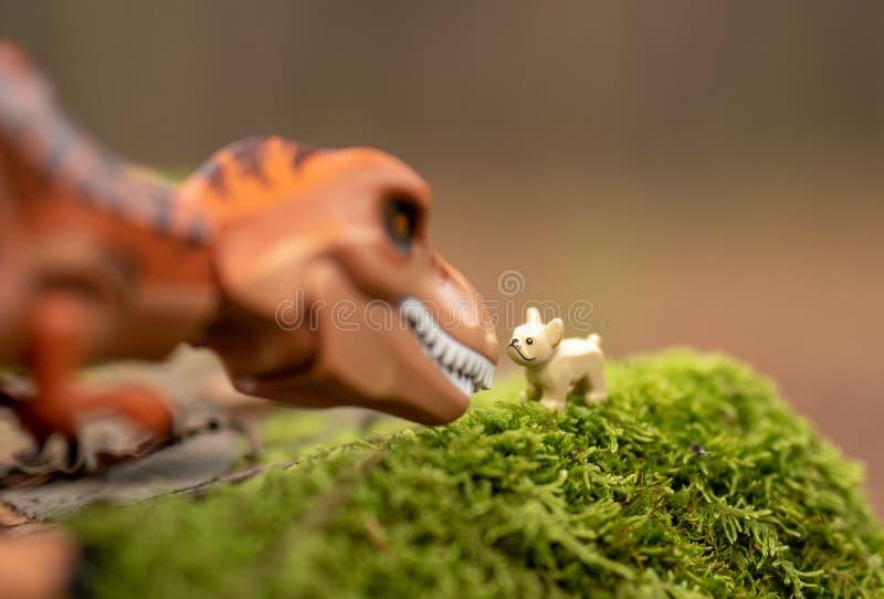 Δεινόσαυρος αριθμού Lego που εξετάζει το κατοικίδιο ζώο στοκ φωτογραφία με δικαίωμα ελεύθερης χρήσης
