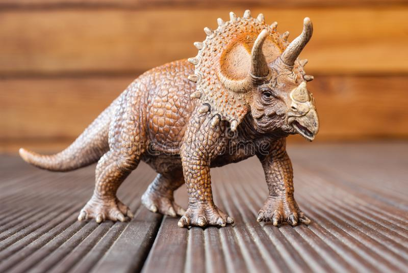 Δεινόσαυρος παιχνιδιών triceratops στο ξύλινο πάτωμα στοκ φωτογραφία με δικαίωμα ελεύθερης χρήσης