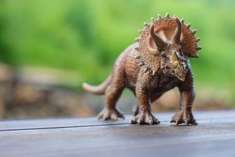 Δεινόσαυρος παιχνιδιών triceratops στο ξύλινο πάτωμα στοκ εικόνες