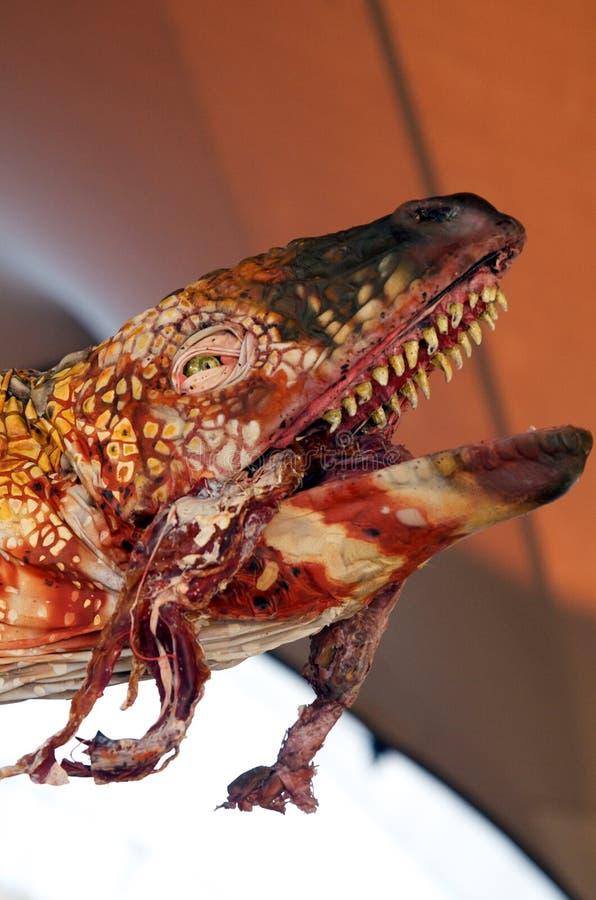 δεινόσαυρος που τρώει το κρέας στοκ εικόνες