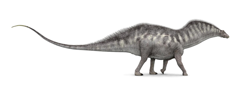Δεινόσαυρος Amargasaurus διανυσματική απεικόνιση
