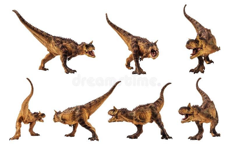 Δεινόσαυρος Carnotaurus στο άσπρο υπόβαθρο στοκ φωτογραφία
