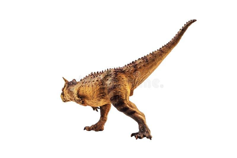 Δεινόσαυρος Carnotaurus στο άσπρο υπόβαθρο στοκ φωτογραφίες
