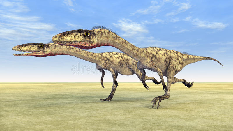 Δεινόσαυρος Coelophysis ελεύθερη απεικόνιση δικαιώματος
