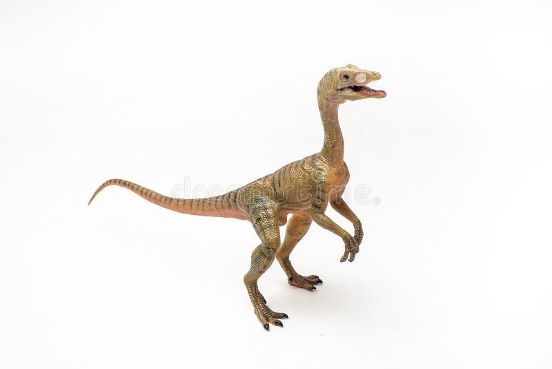 Δεινόσαυρος Compsognathus στο άσπρο υπόβαθρο στοκ εικόνες