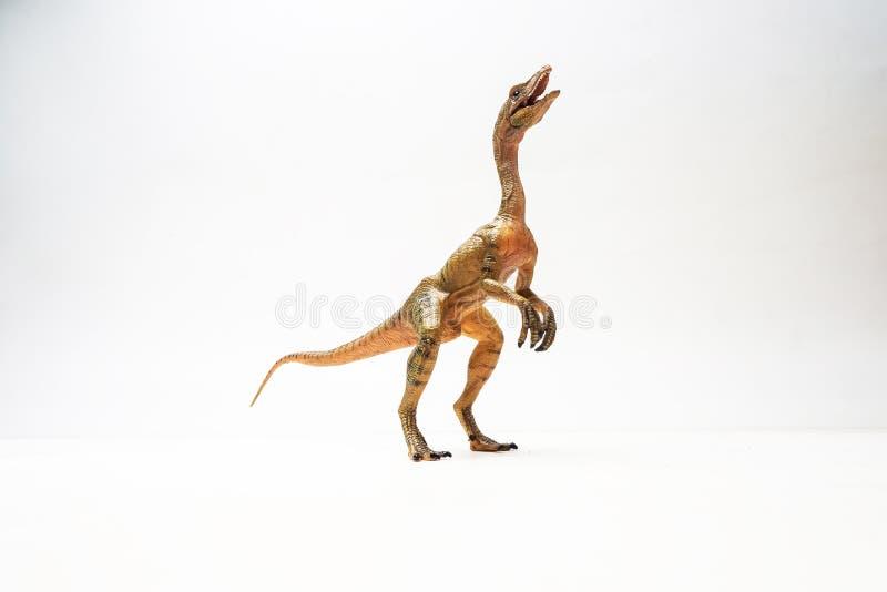 Δεινόσαυρος Compsognathus στο άσπρο υπόβαθρο στοκ φωτογραφία