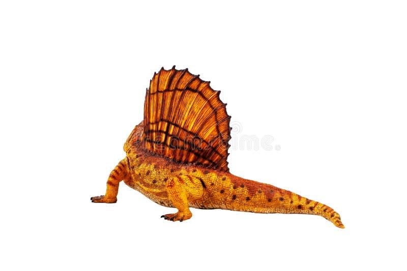 Δεινόσαυρος Dimetrodon στο άσπρο υπόβαθρο στοκ φωτογραφίες με δικαίωμα ελεύθερης χρήσης