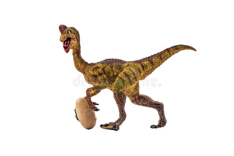 Δεινόσαυρος Oviraptor στο άσπρο υπόβαθρο στοκ φωτογραφία με δικαίωμα ελεύθερης χρήσης