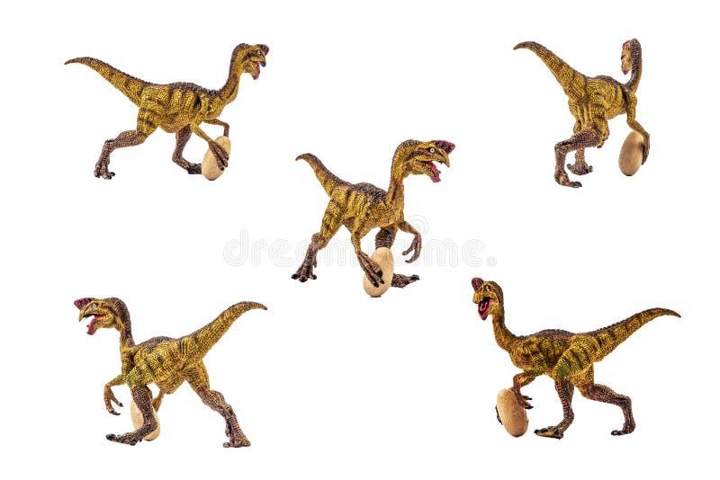 Δεινόσαυρος Oviraptor στο άσπρο υπόβαθρο στοκ εικόνα με δικαίωμα ελεύθερης χρήσης
