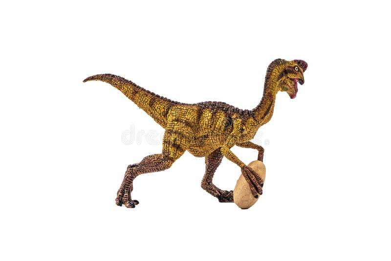 Δεινόσαυρος Oviraptor στο άσπρο υπόβαθρο στοκ εικόνα