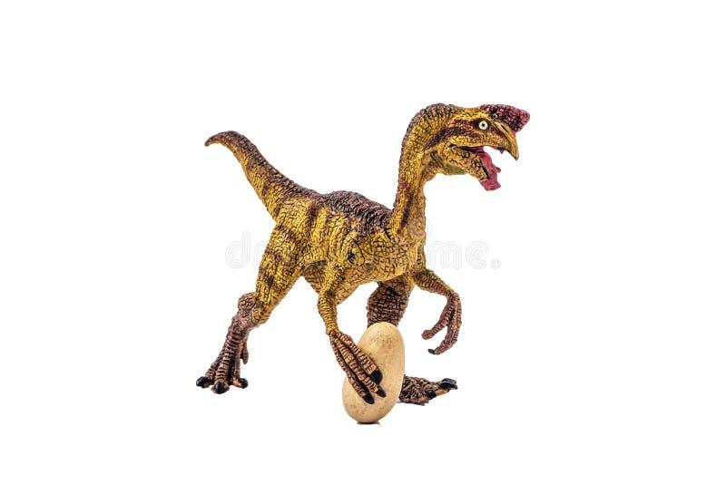 Δεινόσαυρος Oviraptor στο άσπρο υπόβαθρο στοκ φωτογραφία