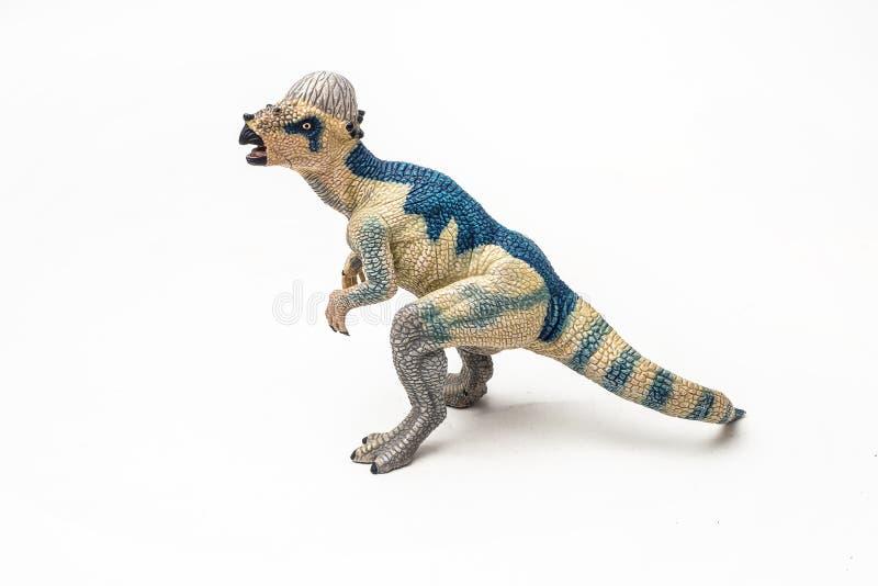 Δεινόσαυρος Pachycephalosaurus στο άσπρο υπόβαθρο στοκ φωτογραφίες
