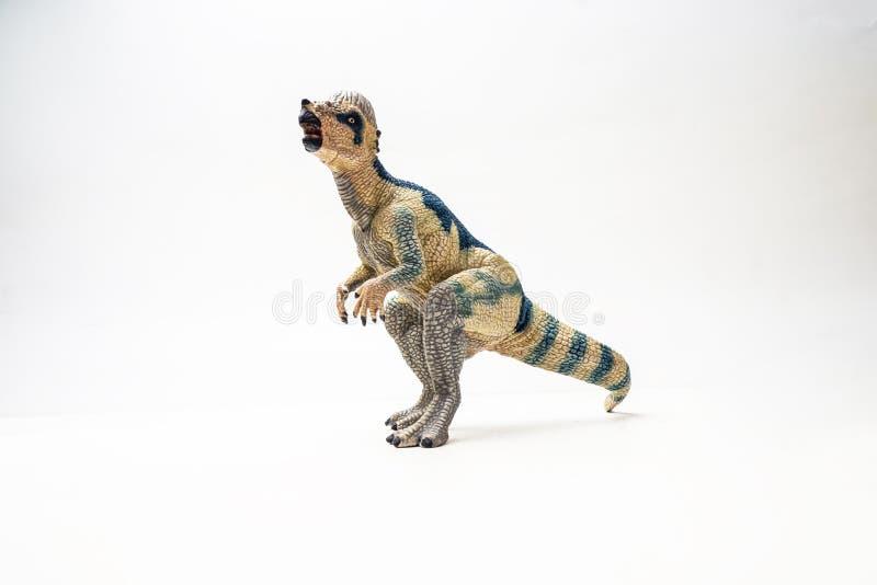 Δεινόσαυρος Pachycephalosaurus στο άσπρο υπόβαθρο στοκ εικόνα