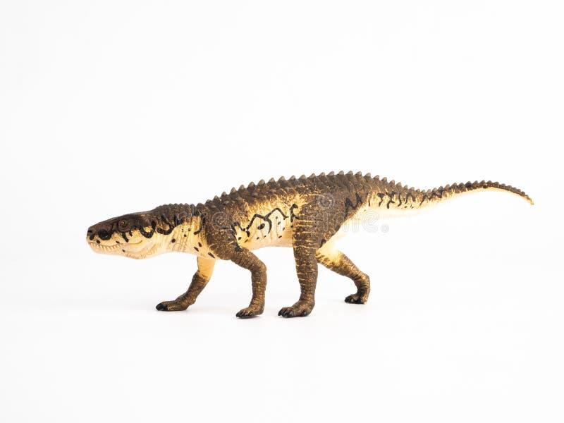 Δεινόσαυρος Postosuchus στο άσπρο υπόβαθρο στοκ εικόνα με δικαίωμα ελεύθερης χρήσης