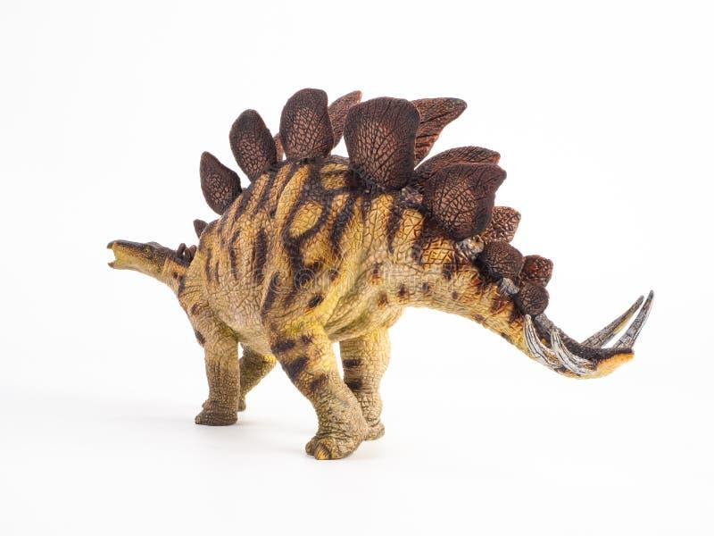 Δεινόσαυρος Stegosaurus στο άσπρο υπόβαθρο στοκ εικόνες με δικαίωμα ελεύθερης χρήσης
