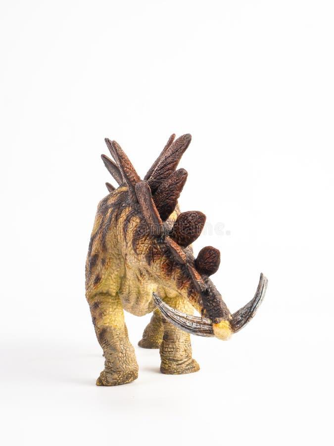 Δεινόσαυρος Stegosaurus στο άσπρο υπόβαθρο στοκ φωτογραφία με δικαίωμα ελεύθερης χρήσης