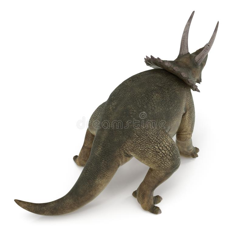 Δεινόσαυρος Triceratops στο λευκό τρισδιάστατη απεικόνιση απεικόνιση αποθεμάτων