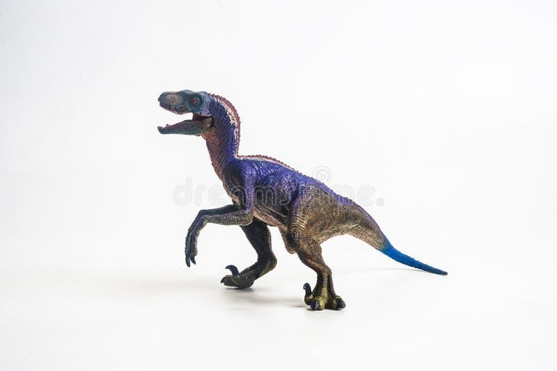 Δεινόσαυρος, Velociraptor στο άσπρο υπόβαθρο στοκ φωτογραφία με δικαίωμα ελεύθερης χρήσης