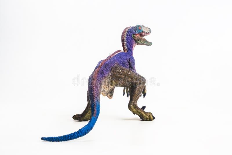 Δεινόσαυρος, Velociraptor στο άσπρο υπόβαθρο στοκ εικόνες με δικαίωμα ελεύθερης χρήσης