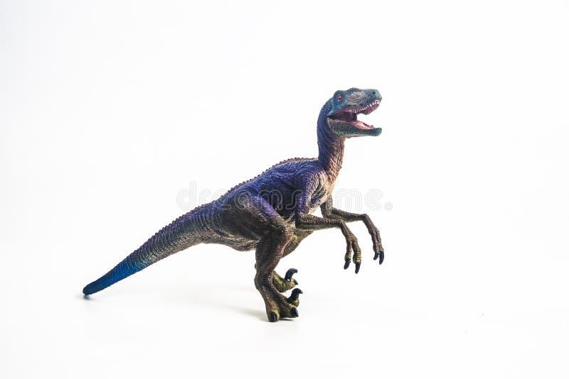 Δεινόσαυρος, Velociraptor στο άσπρο υπόβαθρο στοκ εικόνα